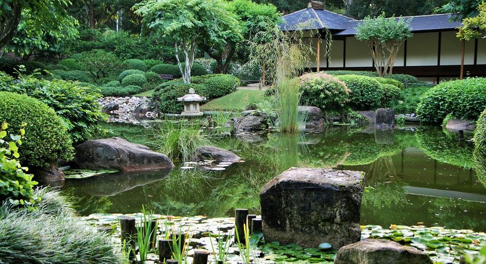 Mt-coot-tha-botanic-gardens-mgj