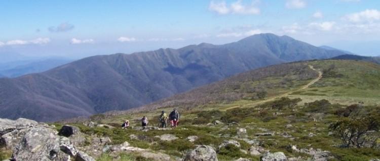 Alpine Walking in Autumn (079a) Jessie Bray (2)
