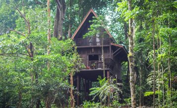 Happy Nest bungalow at Our Jungle House.