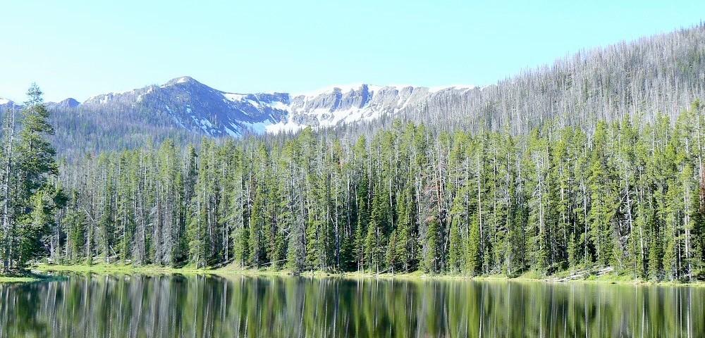 eleanor-lake-yellowstone-national-park