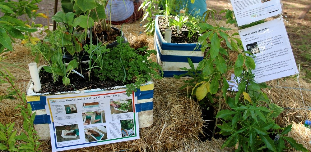 Womadelaide Wicking beds at the Permaculture SA stall
