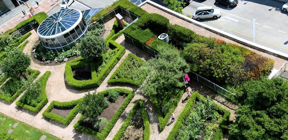 Fairmont Waterfront's edible rooftop garden