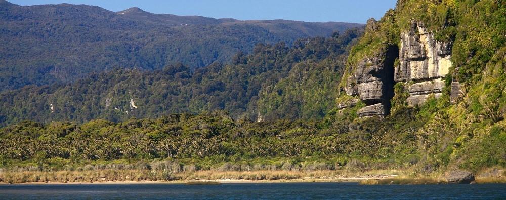 Heaphy Track New Zealand 8