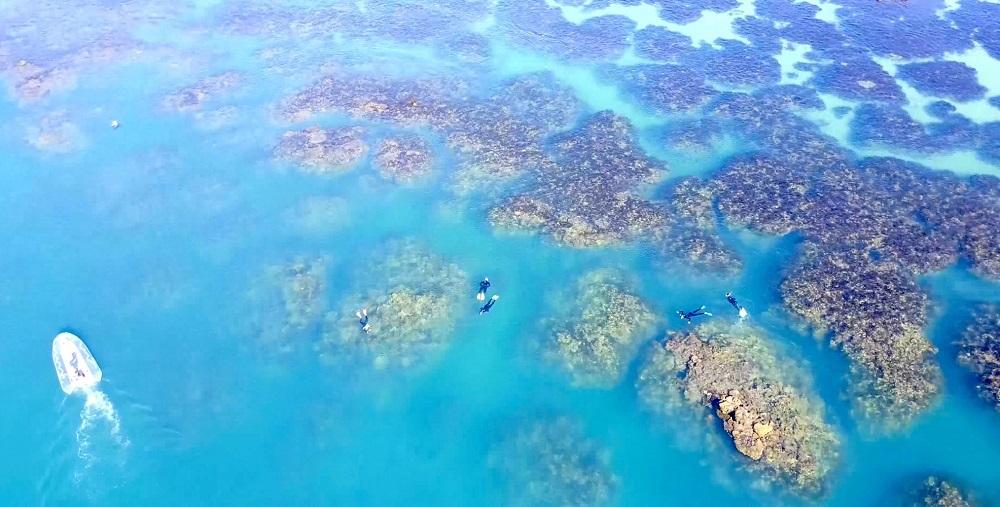 Brampton reef flat 2