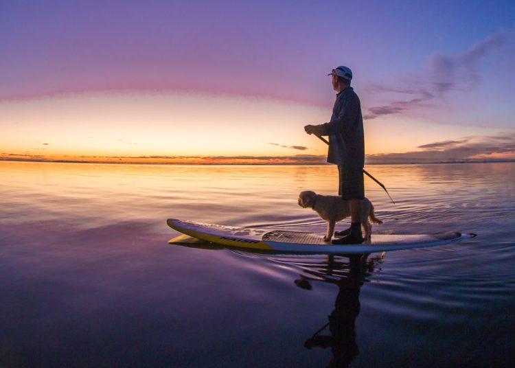 paddle boarding SUP Moreton Bay 3