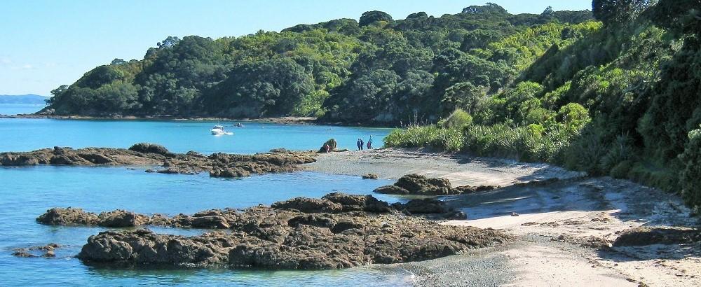 Tiritiri Matangi New Zealand (2)