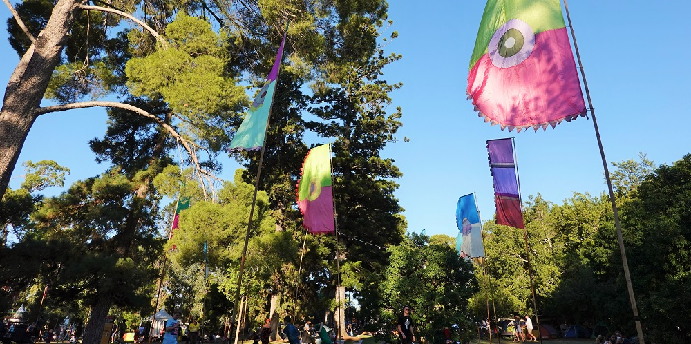 WOMADelaide's famous flags